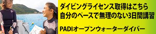 PADIオープンウォーターダイバー3日間コース