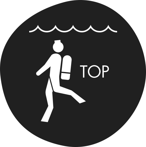 to_top