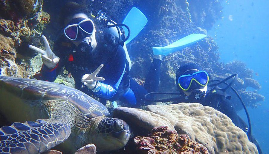3本目、サンゴ&海ガメポイントにエントリー