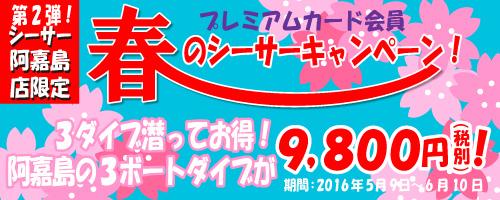 5,6月!春のキャンペーン!