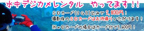 デジカメレンタル1GBのSD付で2800円