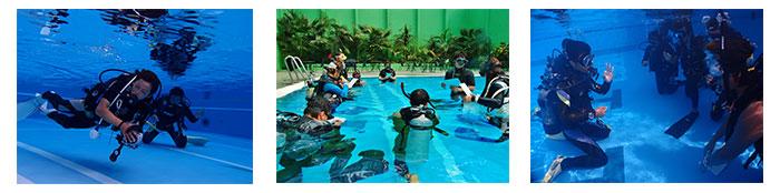 限定水域での講習