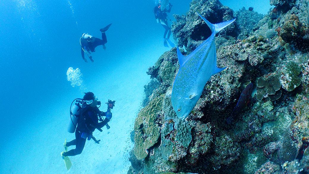 fun diving at the kerama islands in Okinawa