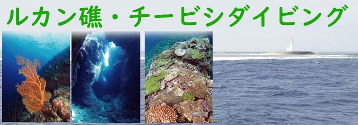 ルカン礁・本島南部ダイビング