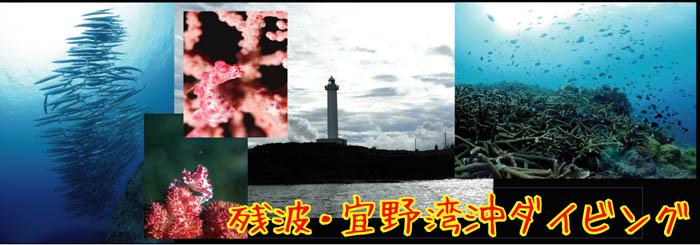 残波岬・宜野湾沖ダイビング
