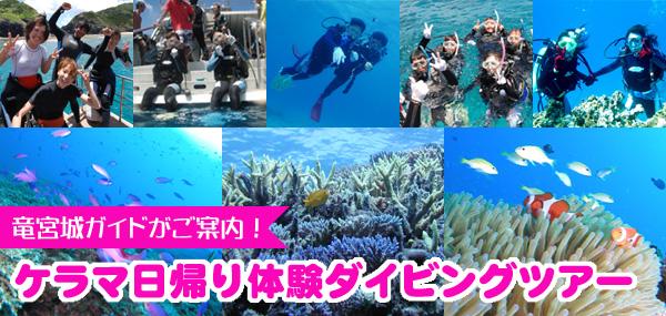 体験ダイビング!竜宮城ガイドがお連れします!