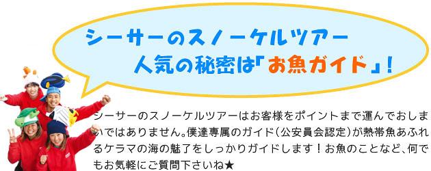 シーサー那覇店のスノーケルツアー、人気の秘密は「お魚ガイド」!