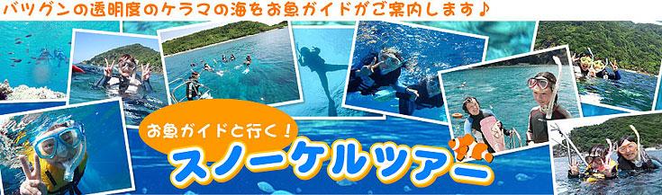 バツグンの透明度の慶良間の海を「お魚ガイド」がご案内します!