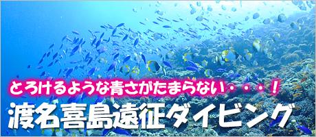 渡名喜島遠征ダイビング