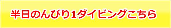 half-nonbiri-1.jpg