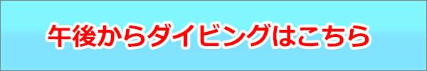 half-nonbiri-2.jpg