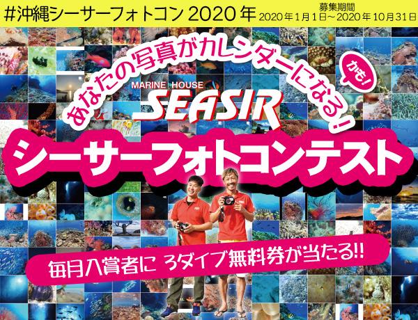 沖縄シーサーフォトコン2019沖縄の海の想い出