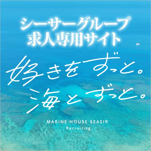 沖縄ダイビングの求人